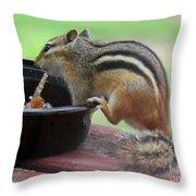 Chipmunk And Jam Throw Pillow