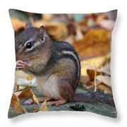 Chipmunk Hungry Throw Pillow