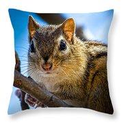 Chipmunk On A Branch Throw Pillow