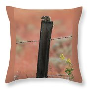 Chipmunk On Fence Post Throw Pillow