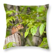 Chipmunk Shares Fence Post Throw Pillow