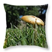 Chipmunks View Of A Mushroom Throw Pillow