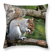 Chipping Away Throw Pillow