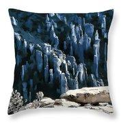 Chiricahua Pinnacles D Throw Pillow