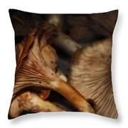 Chitaqui Mindscape Throw Pillow