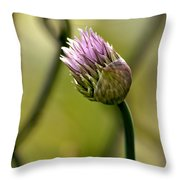 Chive In Bloom Throw Pillow