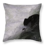 Chocolate Lab Rock Throw Pillow