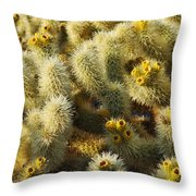 Cholla Cactus Garden Mirage Throw Pillow
