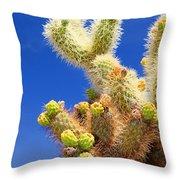 Cholla Cactus I By Diana Sainz Throw Pillow
