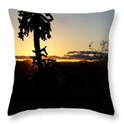 Cholla Cactus Sunset Throw Pillow