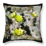 Cholla Flowers Throw Pillow