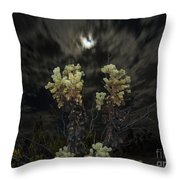 Cholla Light - Joshua Tree National Park Throw Pillow