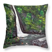 Chorro De Dona Juana Throw Pillow