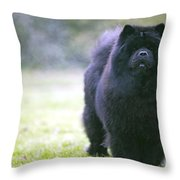 Chow Chow Dog Throw Pillow