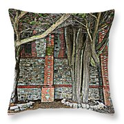 Christ Church Cathedral Port Stanley Falkland Islands Throw Pillow