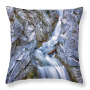 Christine Falls In Mount Rainier National Park Throw Pillow