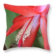 Christmas Cactus 3 Throw Pillow
