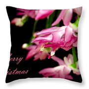 Christmas Cactus Greeting Card Throw Pillow by Carolyn Marshall