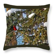 Christmas Cardinal Throw Pillow
