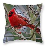 Christmas Cardinal Throw Pillow