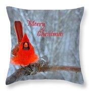 Christmas Red Cardinal Throw Pillow