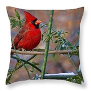 Christmas Color Throw Pillow