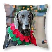 Christmas Dog Throw Pillow