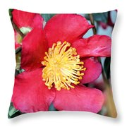 Christmas In A Flower Throw Pillow