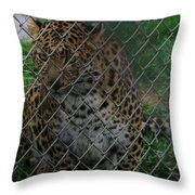 Christmas Leopard II Throw Pillow