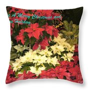 Christmas Poinsettias  Throw Pillow