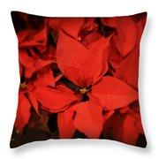 Christmas Poinsettias Throw Pillow