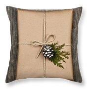 Christmas Present  Throw Pillow by Elena Elisseeva