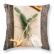 Christmas Present Throw Pillow by Viktor Pravdica