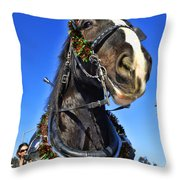 Christmas Shire 2 Throw Pillow