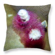 Christmas Tree Worms 2 Throw Pillow