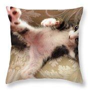 Christopher Paws Up Throw Pillow