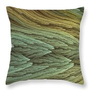 Chromatic Appeal Throw Pillow