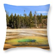 Chromatic Spring Throw Pillow by Adam Jewell