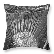 Chrome B And W Throw Pillow
