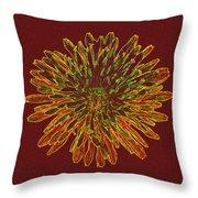 Chrysanthemum Fire Throw Pillow