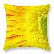 Chrysanthemum Flower Closeup Throw Pillow