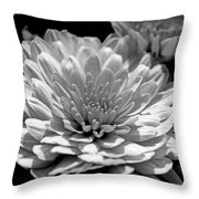 Chrysanthemum In Light And Shadow Throw Pillow