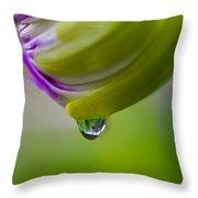 Raindrop Bud Throw Pillow