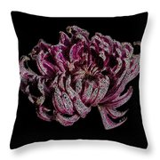Chrysanthemum Scribble Throw Pillow