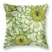 Chrysanthemum Throw Pillow by Vickie Szumigala
