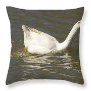 Chuck The Duck Looking At You Throw Pillow
