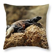 Chucka Walla Basking Throw Pillow