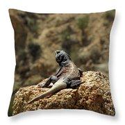 Chucka Walla Overlook Throw Pillow