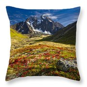 Chugach Autumn Throw Pillow