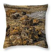 Church By The Rocks Throw Pillow